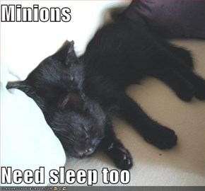 Minions  Need sleep too