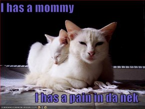 I has a mommy  I has a pain in da nek