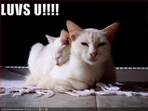 LUVS U!!!!