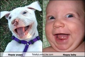 Happy puppy TotallyLooksLike.com Happy baby