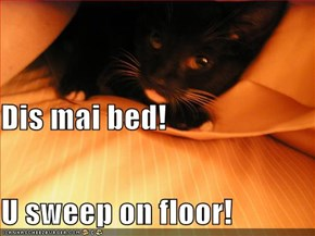 Dis mai bed!  U sweep on floor!