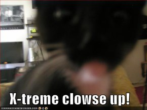 X-treme clowse up!