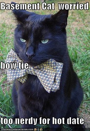 Basement Cat  worried  bow tie too nerdy for hot date