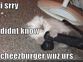 i srry didnt know cheezburger wuz urs
