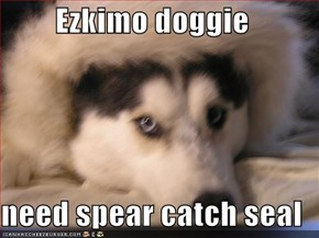 Ezkimo doggie  need spear catch seal
