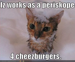 Iz works as a periskope   4 cheezburgers.