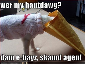 wer my hautdawg?  dam e-bayz, skamd agen!