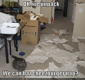 OK, we unpack  We can haz cheezburger nao?