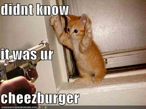 didnt know  it was ur  cheezburger