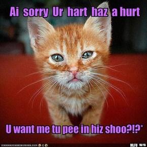 Ai  sorry  Ur  hart  haz  a hurt