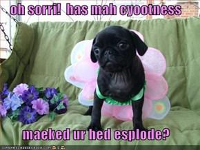oh sorri!  has mah cyootness  maeked ur hed esplode?