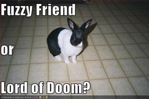 Fuzzy Friend or Lord of Doom?