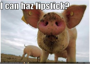 I can haz lipstick?