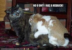 NO U DNT! I HAZ A HEDAICK!