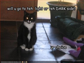 will u go to teh  light or teh DARK side?