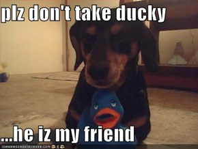 plz don't take ducky  ...he iz my friend