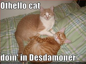 Othello cat  doin' in Desdamoner