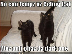 No can tempz uz Celing Cat  Wez onli obaz da dark one