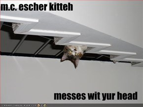 m.c. escher kitteh  messes wit yur head