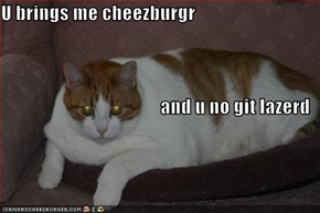 U brings me cheezburgr  and u no git lazerd