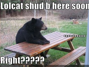 Lolcat shud b here soon ............ Right?????