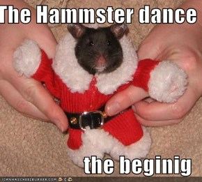 The Hammster dance  the beginig
