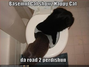 Basemnt Cat showz Happy Cat  da road 2 perdishun
