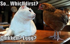 So... Which first?  Chikken? Eggg?