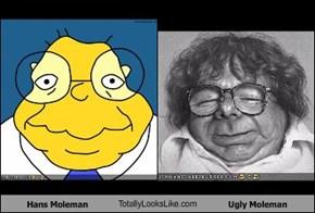Hans Moleman TotallyLooksLike.com Ugly Moleman