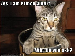 Yes, I am Prince Albert ...  Why do you ask?