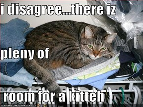 i disagree...there iz pleny of  room for a kitteh