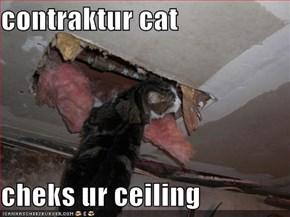 contraktur cat  cheks ur ceiling