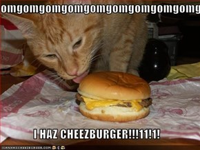 omgomgomgomgomgomgomgomgomg  I HAZ CHEEZBURGER!!!11!1!