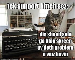 low tek kitteh