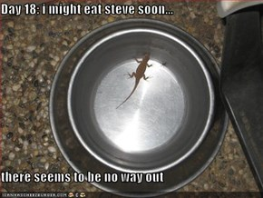 Day 18: i might eat steve soon...  there seems to be no way out