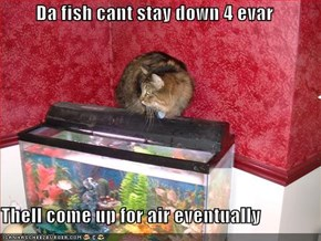 Da fish cant stay down 4 evar  Thell come up for air eventually