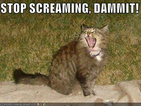 STOP SCREAMING, DAMMIT!