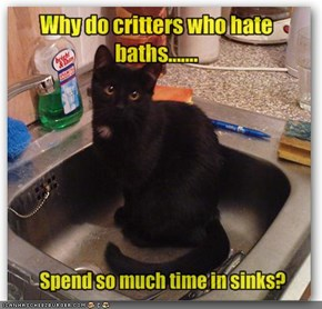 Why do critters who hate baths.......