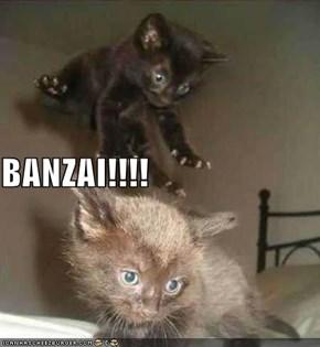 BANZAI!!!!