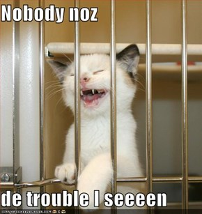 Nobody noz  de trouble I seeeen
