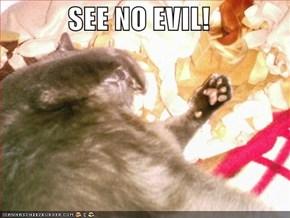 SEE NO EVIL!