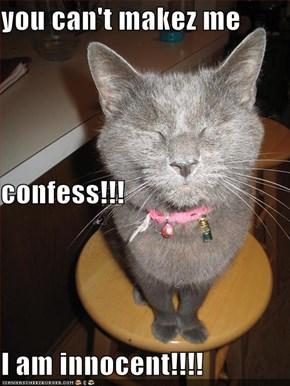 you can't makez me  confess!!! I am innocent!!!!