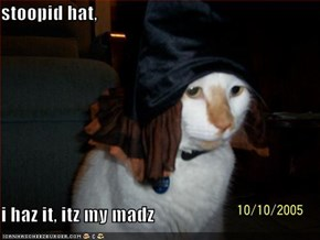 stoopid hat,  i haz it, itz my madz