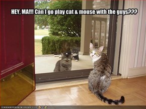 HEY, MA!!! Can I go play cat & mouse with the guys???