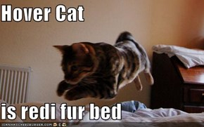 Hover Cat  is redi fur bed