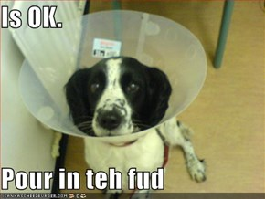 Is OK.   Pour in teh fud
