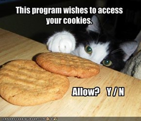 This program wishes to access 