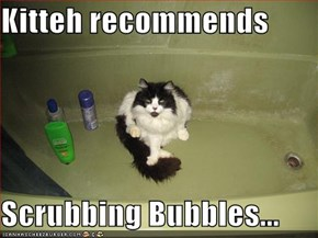 Kitteh recommends  Scrubbing Bubbles...
