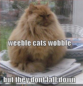 weeble cats wobble but they dont fall down