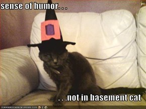 sense of humor. . .  . . .not in basement cat